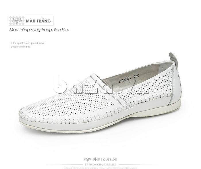 Giày nam Olunpo XCY1503 trắng