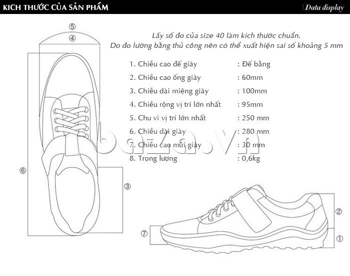 kích thước của sản phẩm giày nam Olumpo QABA1214