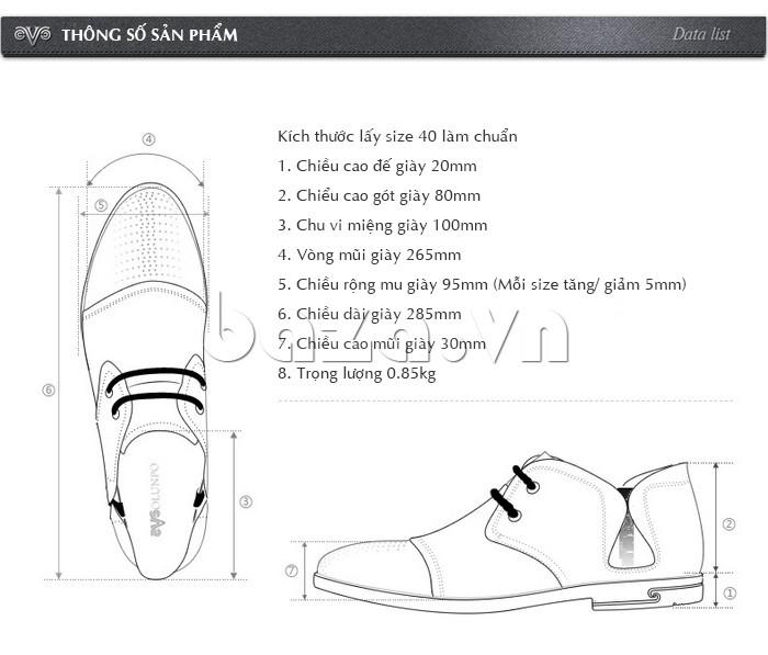 thông số sản phẩm của giày nam Olunpo QDT1303