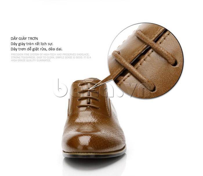 Dây giày tròn, trơn lịch sự, dễ dàng giặt rửa