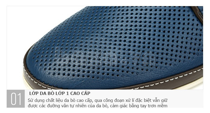 Giày da nam đục lỗ thời trang Olunpo XBS1501 - da thật sành điệu