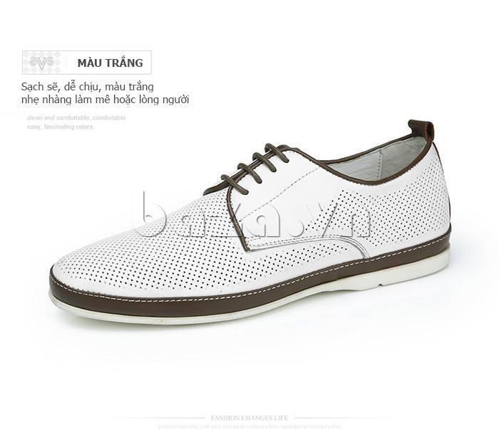 Giày da nam đục lỗ thời trang Olunpo XBS1501 màu trắng
