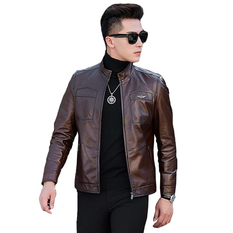 Áo Jacket da cừu biểu tượng Cánh chim đại bàng